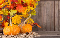 Two Autumn Pumpkins Stock Photo