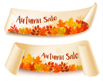 Two Autumn Sale Banners With Colorful Leaves. Layered Vector Stock Image