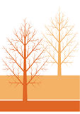 Two autumn trees. Without leaves in brown Royalty Free Stock Photos
