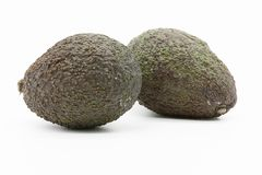 Two avocados, whole fruits stock photography