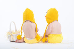 Two babies in chicken costumes with white basket from behind Stock Photos