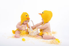 Two babies in chicken costumes with white basket and hay Stock Photos