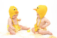 Two babies in Easter Chicken Costumes. Infant or toddler baby girl and baby boy wearing duck or chicken hats and diaper covers, studio isolated royalty free stock images