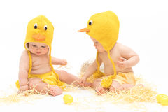 Two babies in Easter Chicken Costumes. Infant or toddler baby girl and baby boy wearing duck or chicken hats and diaper covers, studio isolated stock image