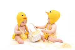Two babies in Easter Chicken Costumes. Infant or toddler baby girl and baby boy wearing duck or chicken hats and diaper covers, studio isolated, sitting backward stock image