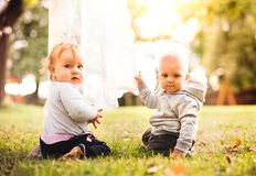 Two babies on the grass in the garden. Baby girl and baby boy sitting on the ground stock image