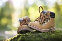 Baby boot forest. Two baby boot in forest forest on a rock Royalty Free Stock Photo
