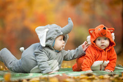 Two baby boys dressed in animal costumes in park. Two baby boys dressed in animal costumes in autumn park Royalty Free Stock Images
