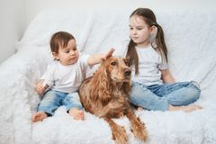 Two baby girls, sisters play on white sofa with red dog stock photo