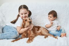 Two baby girls, sisters play on white sofa with red dog royalty free stock image