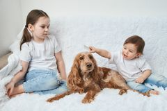 Two baby girls, sisters play on white sofa with red dog stock images