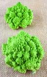 Two baby romanesco cauliflowers Royalty Free Stock Images