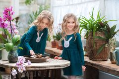 Two baby sisters in a winter garden behind an old wooden wooden rustic table with flowering orchids and a tub of water and stones. royalty free stock photos