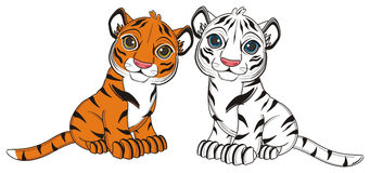 Two baby of tigers Royalty Free Stock Photo