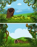 Two background scenes with plants on the hills Stock Photos