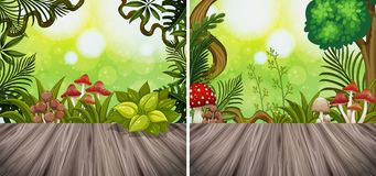 Two background scenes with woodend board and garden. Illustration Royalty Free Stock Photo