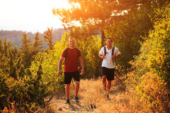 Two backpackers in the summer mountain Royalty Free Stock Photos