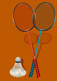 Two badminton rackets and shuttlecock Royalty Free Stock Image