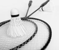 Two badminton rackets and two shuttlecock on the white Royalty Free Stock Image