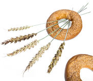 Two bagels and wheat ears Stock Photography