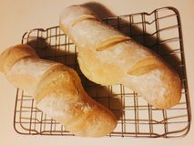 Two baguettes on a baking grid Stock Photo