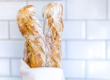 Two baguettes in a towel Stock Image