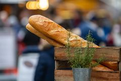 Two baguettes in a wooden box behind a flower pot with rosemary stock photo