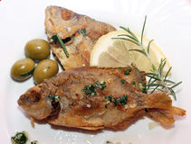 Two baked fish on a plate Stock Images