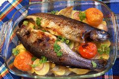 Two baked rainbow trouts. Two rainbow trouts baked on a glass dish with potato, tomato and onion, sprinkled with chopped parsley royalty free stock image
