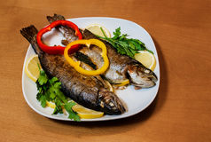 Two baked trouts Stock Photo