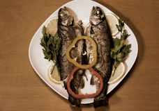 Two baked trouts. Vintage style. Royalty Free Stock Photo