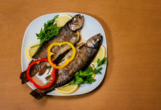 Two baked trouts Stock Photos