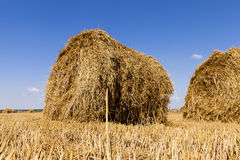 Two bales of hay Stock Image