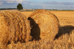 Two bales of hay on the stubble field Royalty Free Stock Photos