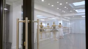 Two ballerinas are practicing using barre in school indoors. Young females is exercising near bar in modern studio. Graceful ballet dancers in silk suits stand stock footage