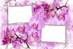 Two bamboo frames with orchids Royalty Free Stock Photos