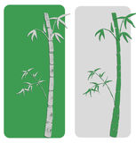 Two bamboos postcard Stock Images