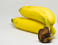 Two Banana  on white background, ready to eat. Stock Images