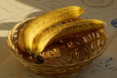 Two bananas in basket. Two ripe bananas in the basket on the sun Royalty Free Stock Photography