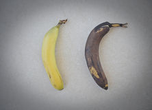 Two Bananas Stock Image