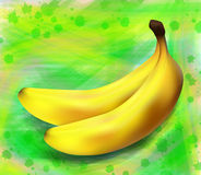 Two bananas on a green background Royalty Free Stock Photo