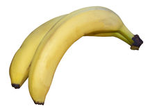 Two bananas Stock Images