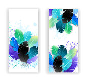 Two banners with bright feathers Royalty Free Stock Photos
