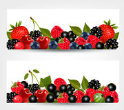Two banners with delicious ripe berries. Royalty Free Stock Photography