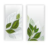 Two banners with patterned leaves of tea Stock Image