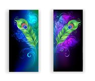 Two banners with peacock feathers. Two banners with colorful peacock feathers on a black background Royalty Free Stock Photography