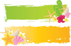 Two banners with summer elements. Two banners with seashells, starfish, flowers and grunge elements vector illustration