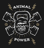 Two barbell and head gorilla weight. Athletic emblem, poster, t shirt design.  For a dark background Stock Photos