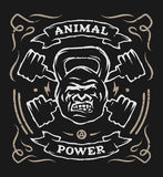 Two barbell and head gorilla weight. Athletic emblem, poster, t shirt design. For a dark background Stock Photo