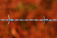 Sharp barbed wire over red background royalty free stock image